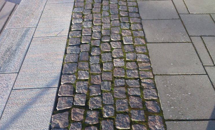 stone-path-news