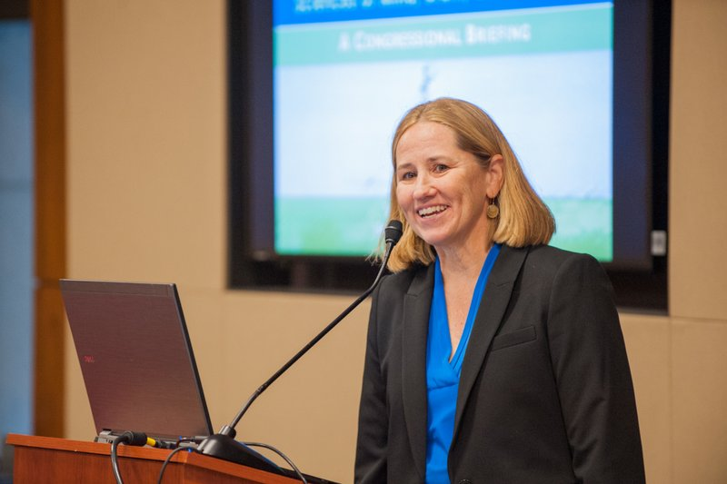 Paula Skedsvold, FABBS Executive Director